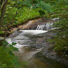 quiet creek by panthrcat
