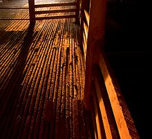 shearing shed 3 by richocam
