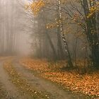 The Bleakness of October by Anders Naesset