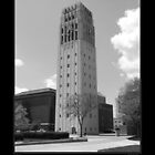 University of Michigan Clock Tower 1 by Phil Perkins