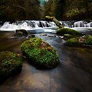 Sweet Creek Oregon 1 by Bob Christopher