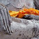 Buddha Hand by Dave Lloyd