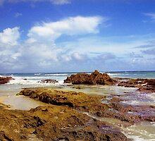 San Juan Rocky Beach, Puerto Rico by Alberto  DeJesus