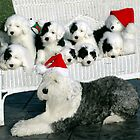 Christmas Dogs by Kathleen Struckle
