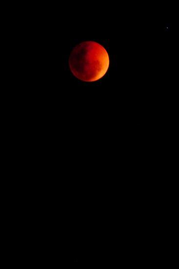 Lunar eclipse in brisbane by Nicole Goggins