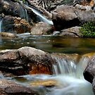 Spring Creek by Lis29