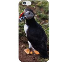 Puffin with Dinner iPhone Case/Skin
