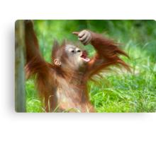 cute baby orangutan Canvas Print