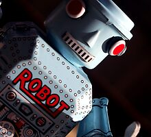 ROBOT  by alistair mcbride