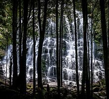 Nelson Falls Tasmania by Russell Charters