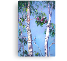 Tambo Trees with some local Residents. Canvas Print