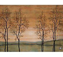 Lumen Naturae, Lumen Dei Photographic Print