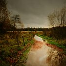 THE RAIN PATH by leonie7