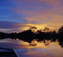 Pantanal Sunset 3 by kuntaldaftary