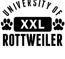 University Of Rottweiler by kwg2200