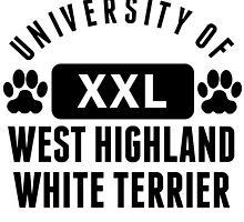 University Of West Highland White Terrier by kwg2200