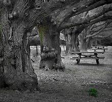 Entish Picnic by Andrew Bosman