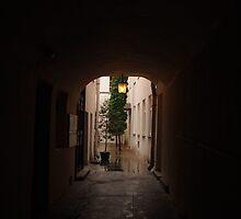 Courtyard. by miniailov