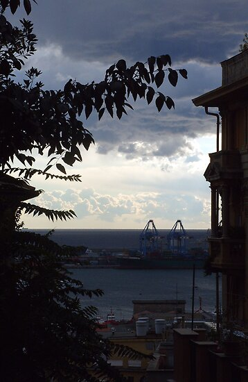 Window view by Alessandro Arcidiacono