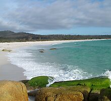 Binalong Bay on East Coast of Tasmania , Australia by phillip wise