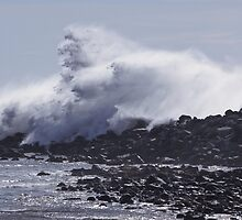 Giant Wave Breaking Over a Sea Wall by Buckwhite
