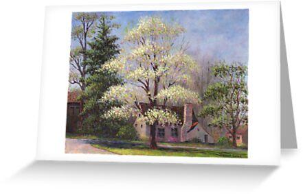 Clouds of Spring by Susan Savad