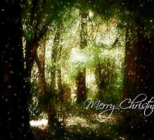 A White Christmas by StacyLee