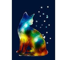 Galactic Space Pussy On Milky Way, Cat, Space, Galaxy Photographic Print