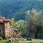 Old Farm in the Valley by Alessandro Pinto