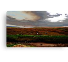 Modified Sea Shore - Dingle Bay Canvas Print