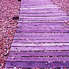 Boardwalk to ....?? by Sara Wiggins