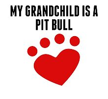 My Grandchild Is A Pit Bull Photographic Print