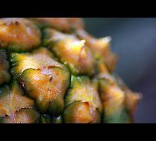 fruit 03 by Kittin
