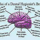 Funny Hygienist's Brain by gailg1957