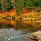 River Bridge Autumn by Diane Schuster