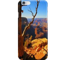 Nature`s Grand iPhone Case/Skin