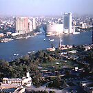 The Nile from Cairo Tower by jeanemm