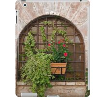 Stone, Ivy, And Grillwork iPad Case/Skin