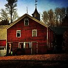 Barn in the Late Afternoon Sun by Debra Fedchin