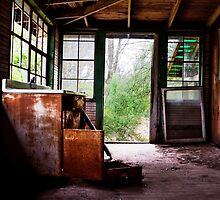 The Porch by Debra Fedchin