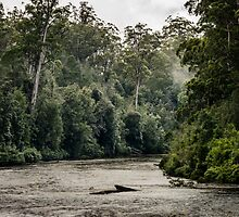 Tahune River Tasmania by Russell Charters