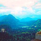 From Neuschwanstein by Priscilla Turner