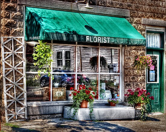 The Florist Shop by Mike  Savad