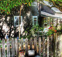 Jacob's Yard by Mike  Savad