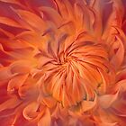 Flame by PhotoDream Art
