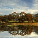 Esthwaite Water Reflections by Jamie  Green