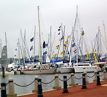 Annapolis Harbor by Karen Ashenberner