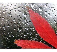 Autumn Rain Photographic Print
