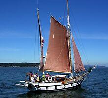 Race Week Ship by Rick Lawler