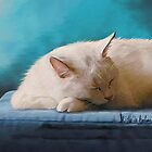 Sleeping White Cat by Michelle Behar